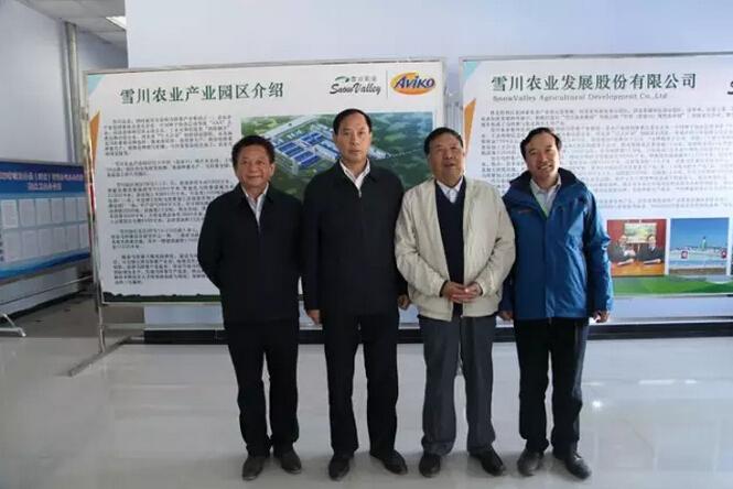 中国农业科学院党组书记陈萌山来雪川农业调研