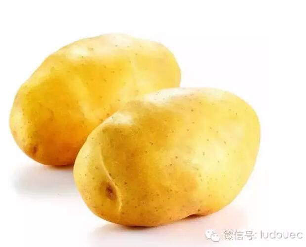 """【薯网头条】张家口察北崛起马铃薯""""王国"""""""